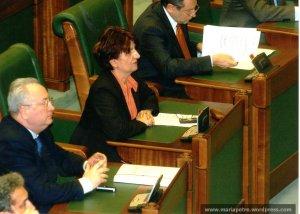Al doilea mandat la Senat, 2005